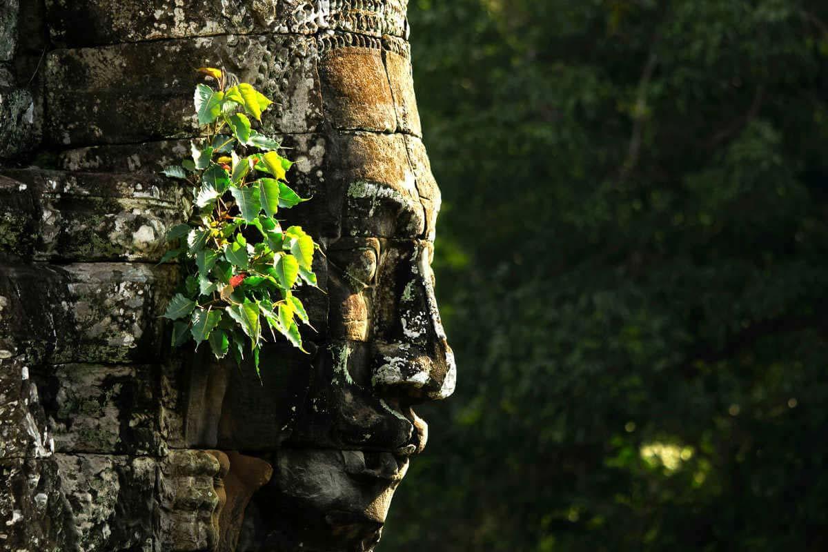 Cambodge séjour luxe : un hôtel de rêve et des activités au top