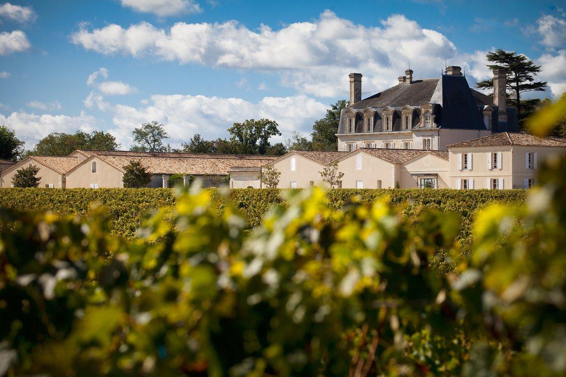 Grands Pauillac : Un peu de culture relative aux vins