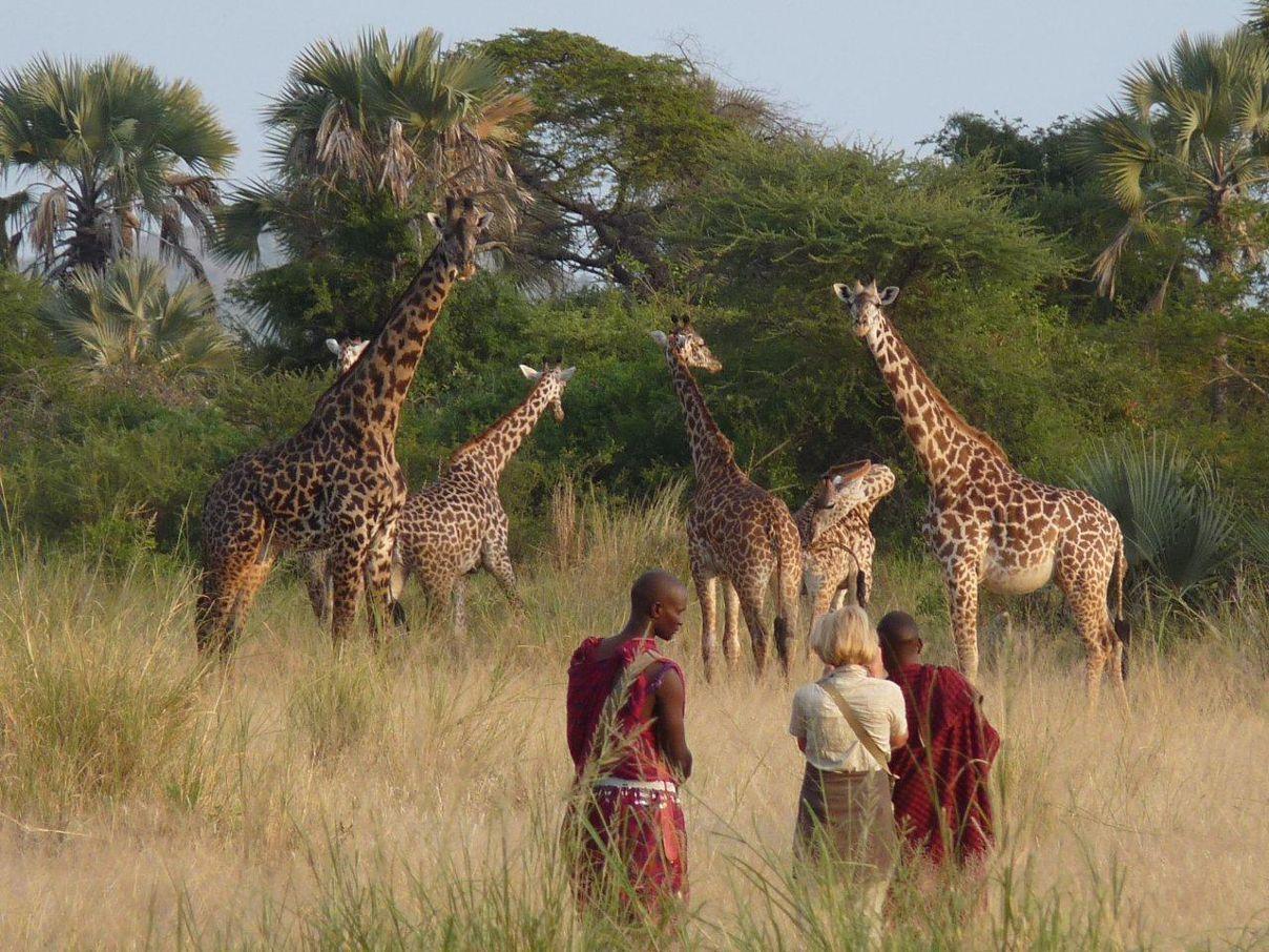 Ravie d'avoir pu réaliser ce rêve de safari